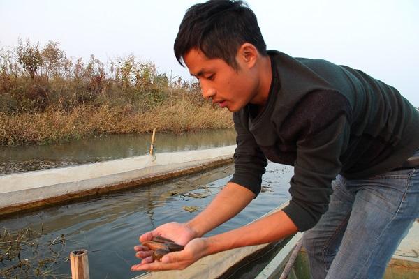 安徽水蛭养殖基地