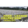 厂家直销供应 尼龙水蛭养殖网 各种定做养殖网网箱