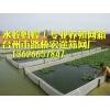 网箱水蛭养殖(小网箱、大网箱)