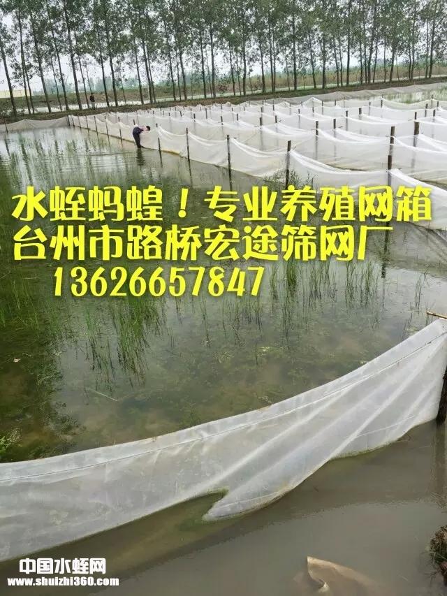 全新料 水蛭网箱 蚂蟥小苗养殖孵化网箱 水蛭养殖网