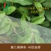 40目加厚 厂家直销聚乙烯网布/泥鳅蚂蟥水蛭养殖网