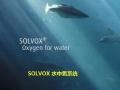 创业水产养殖业虾 (110播放)