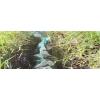 小沼泽网具
