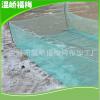 厂家直销 100目大号加厚水蛭泥鳅、抗老化折叠鳝鱼繁殖网箱