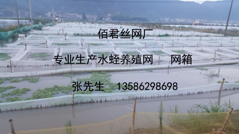 水蛭养殖网箱