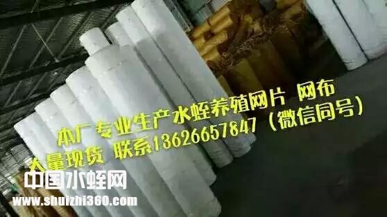 水蛭养殖网布,养殖网箱40目60目80目100目
