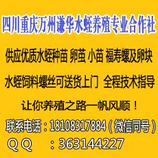 重庆市万州区谦华水蛭养殖专业合作社