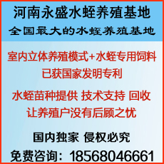 河南永盛水蛭养殖基地