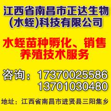 江西省南昌市正达生物(水蛭)科技有限公司