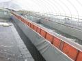高密度工厂化水蛭基地中心