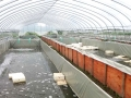 水蛭工厂化基地中心