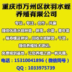 重庆市万州区秋羽水蛭养殖有限公司